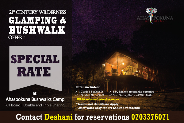 Glamping Bushwalk Offer Ahaspokuna