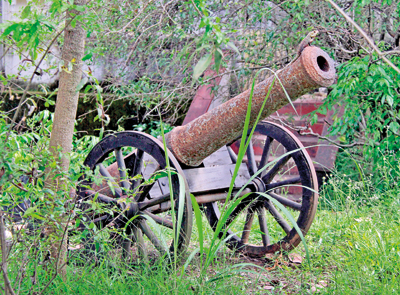 cannon recovered from wellassa