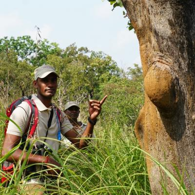 Ahaspokuna experienced naturalists for trekking and bush walks in sri lanka